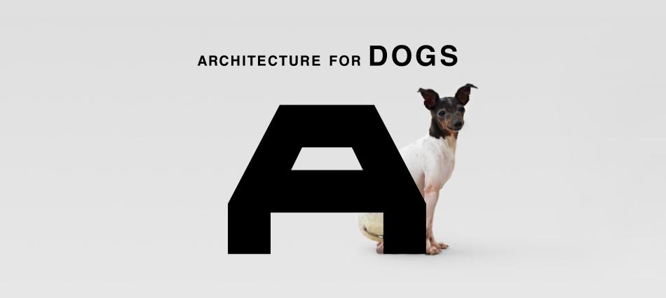 Архитектура для собак – aрхитектура счастья slider16