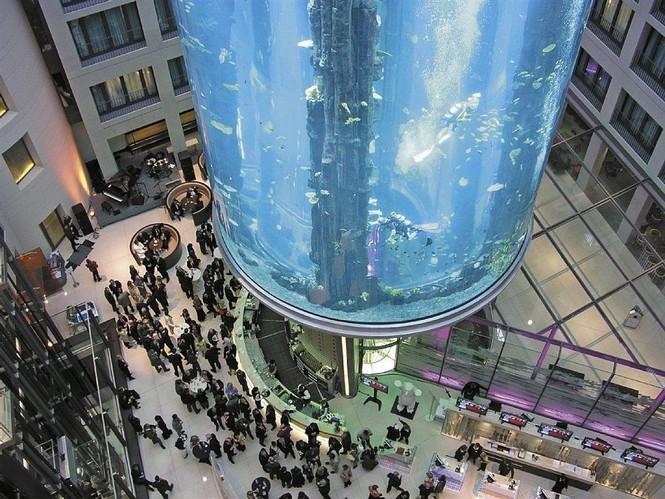 В историческом центре Берлина на берегу реки Шпрее стоит удивительный пятизвездочный отель Radisson Blu Hotel Berlin. Многие считают, что этот отель - воплощение дизайнерских идей, технологий и научных достижений XXI века. Внутри здания стоит самый большой и известный в мире аквариум. А внутри аквариума расположена шахта лифта с настоящим действующим лифтом, позволяющим изнутри рассмотреть аквариум в мельчайших деталях.