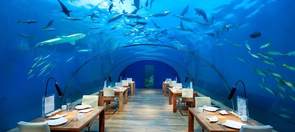 На глубине 5 метров – ресторан Ithaa на Мальдивах 005276 16 Ithaa Undersea Restaurant