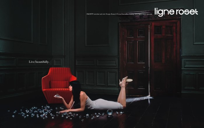 высококачественная-мебель-бренды-Ligne_Roset  Высококачественная мебель от известных зарубежных брендов и дизайнеров                                                                 Ligne Roset