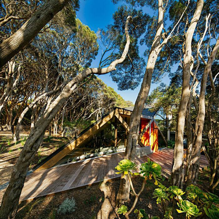 07  Чудеса маскировки: проект дома, cпрятанного в лесных зарослях 07