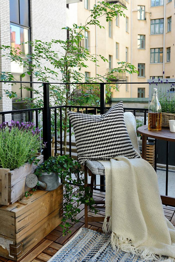Summer-Terrace2