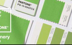 PANTONE 2017 PANTONE 2017 – цвет года в интерьере unnamed file 2 e1481907411186 240x150