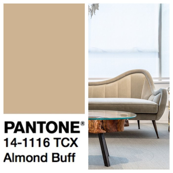 Базовые цвета палитры Pantone 2018/2019 Базовые цвета Базовые цвета палитры Pantone 2018/2019 rsz img 8715