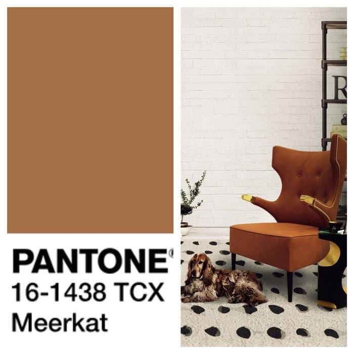 Базовые цвета палитры Pantone 2018/2019 Базовые цвета Базовые цвета палитры Pantone 2018/2019 rsz img 8722
