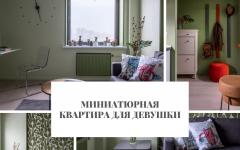 Миниатюрная квартира Миниатюрная квартира для девушки                                                               240x150