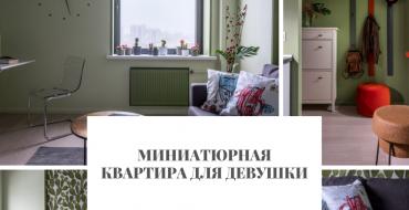 Миниатюрная квартира Миниатюрная квартира для девушки                                                               370x190