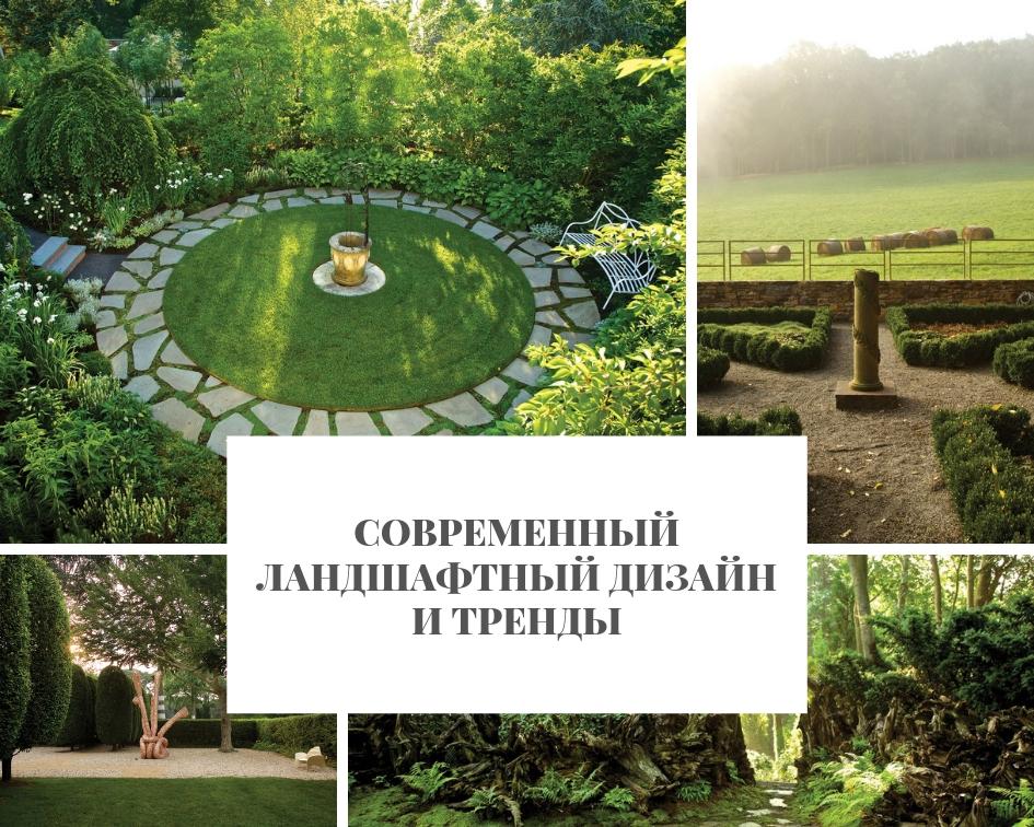 Современный ландшафтный дизайн и тренды Ландшафтный дизайн Современный ландшафтный дизайн и тренды