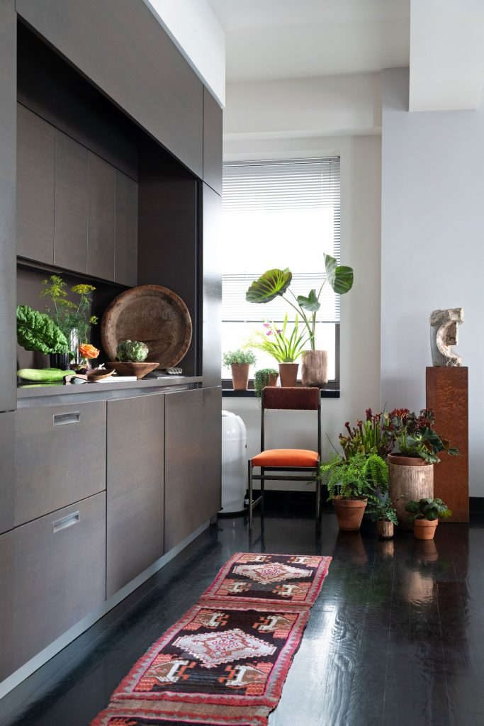 Как комнатные растения украшают апартаменты