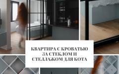 Квартира Квартира с кроватью за стеклом и стеллажом для кота                                                                                                2 240x150