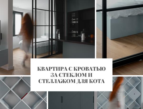 Квартира Квартира с кроватью за стеклом и стеллажом для кота                                                                                                2 600x460