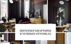 Интерьер Интерьер квартиры в темных оттенках                                                                    240x150